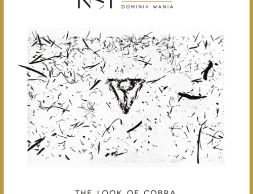 NSI Quartet – The Look Of Cobra – Audio Cave