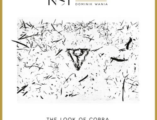 NSI Quartet – The Look Of Cobra – Audio Cave