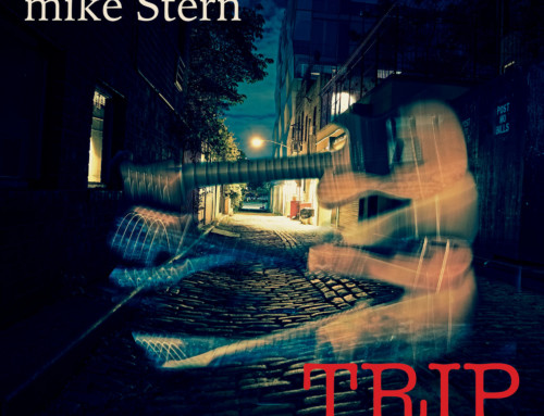 Mike Stern – Trip – Heads Up