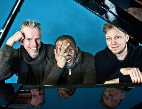 TINGVALL Trio – Nordic Sounds, Jazzy Night