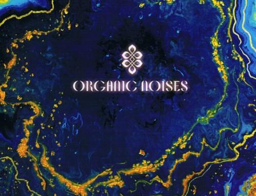 Organic Noises —Organic Noises – Psychosound Studio