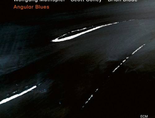 Wolfgang Muthspiel/Scott Colley/Brian Blade – Angular Blues – ECM Records