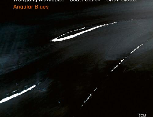 Wolfgang Muthspiel/Scott Colley/Brian Blade – Angular Blues – ECM Records