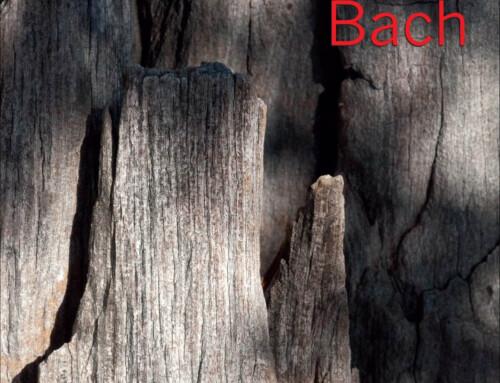 Andrzej Jagodziński Trio – Bach – Agencja Artystyczna Blue Note